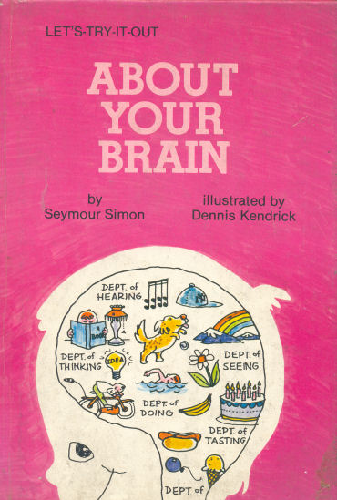 About your brain
